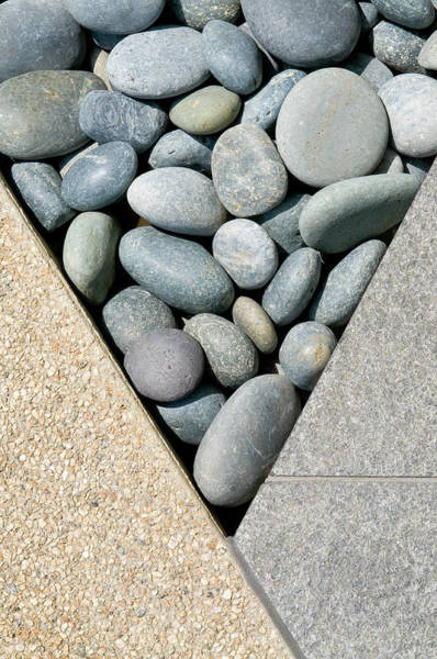 Vertical Garden Photograph - Rock Garden by Spiderplay