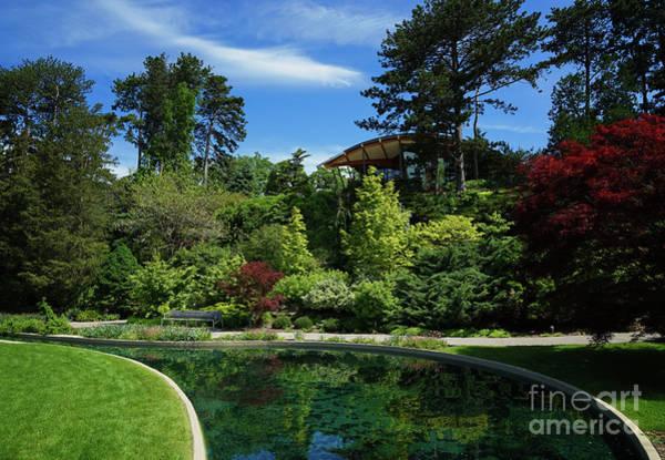 Photograph - Rock Garden Spring by Rachel Cohen