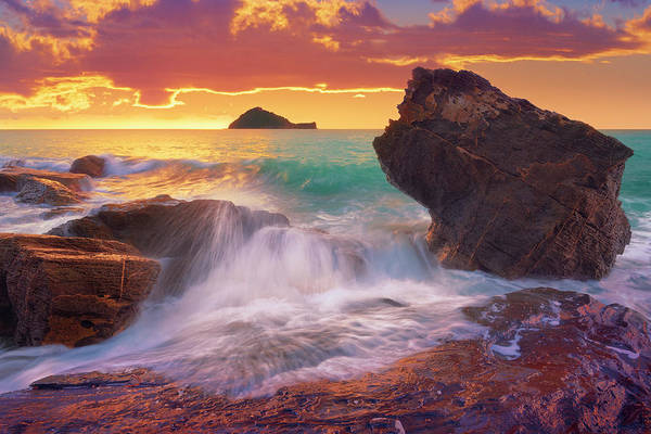 Photograph - Rock Me Gently by Giovanni Allievi
