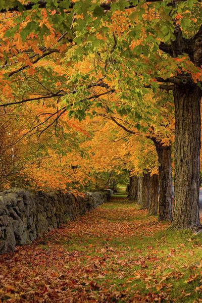 Photograph - Rock Wall Fall Path by Jeff Folger