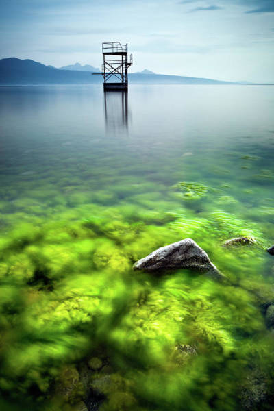 Diving Board Photograph - Rock With Algae And Diviing Board In by © Francois Marclay