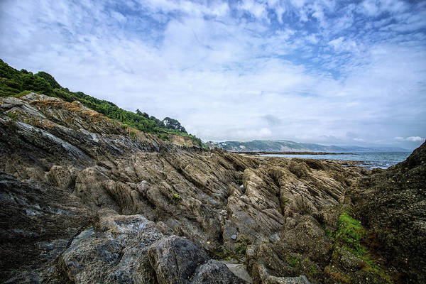 Wall Art - Photograph - Rocks by Martin Newman
