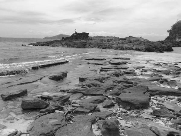 Photograph - Rocky Beach Black And White by Jeremy Guerin