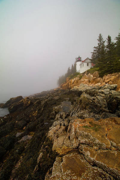 Photograph - Rocky Coast At Bass Harbor Lighthouse Maine by Jeff Folger