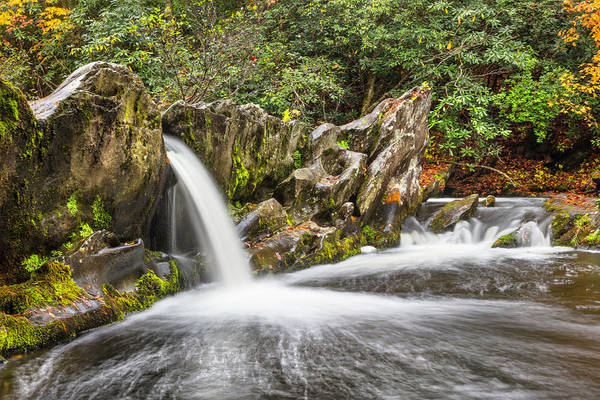Photograph - Rocky Enchantment by Debra and Dave Vanderlaan