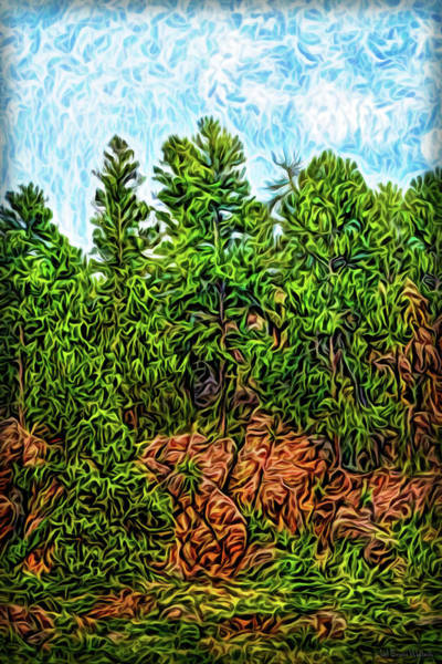 Digital Art - Rocky Forest Light by Joel Bruce Wallach