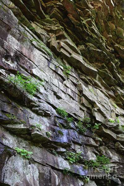 Photograph - Rocky Gorge Cliff  by Phil Perkins