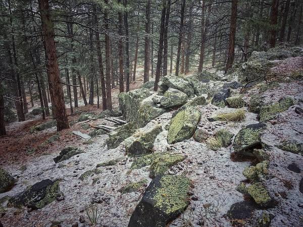 Photograph - Rocky Hillside by Dan Miller