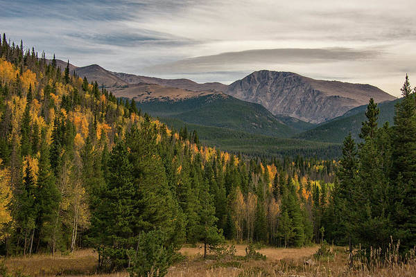 Photograph - Rocky Mountain Autumn by Darlene Bushue