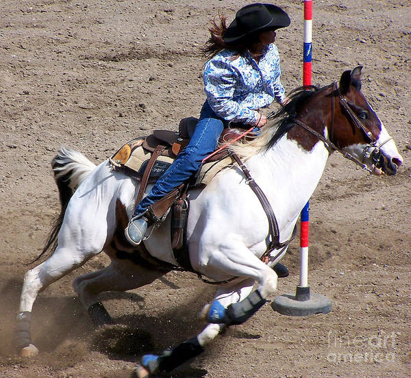 Arena Wall Art - Photograph - Rodeo Series by Ron Hilton