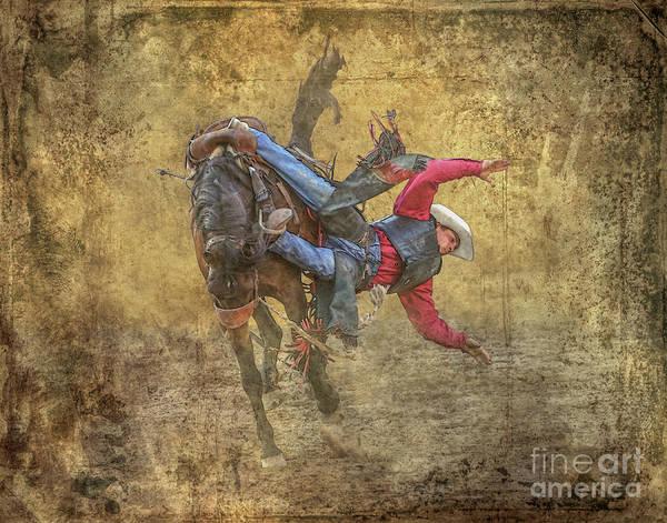 Bucking Bronco Digital Art - Rodeo The Fall by Randy Steele