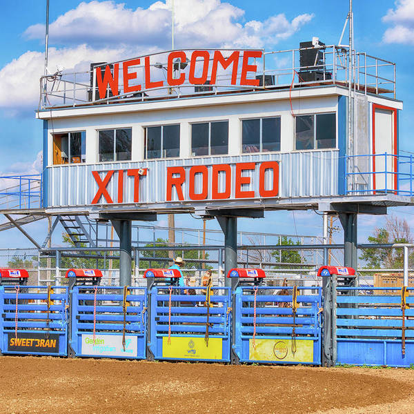 Wall Art - Photograph - Rodeo Time In Texas - #2 by Stephen Stookey