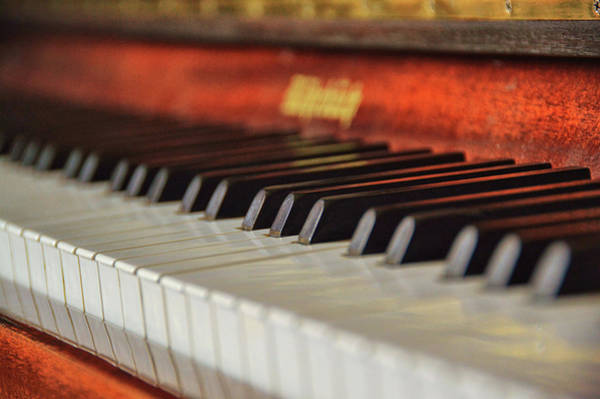 Photograph - Rohrbach Keyboard by JAMART Photography
