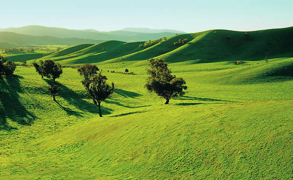 New South Wales Photograph - Rolling Green Hills Near Khancoban, New by Australian Scenics
