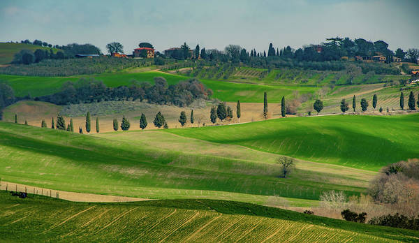 Wall Art - Photograph - Rolling Hills Of Tuscany by Marcy Wielfaert