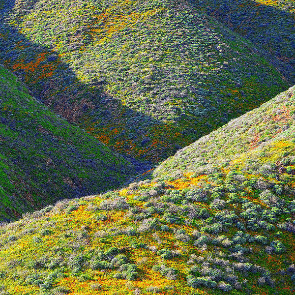 Photograph - Rolling Hillsides In California - Square by Glenn McCarthy Art and Photography