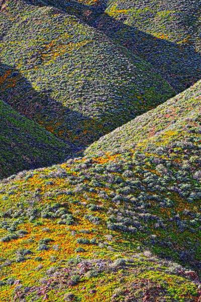 Photograph - Rolling Hillsides In California - Vertical by Glenn McCarthy Art and Photography