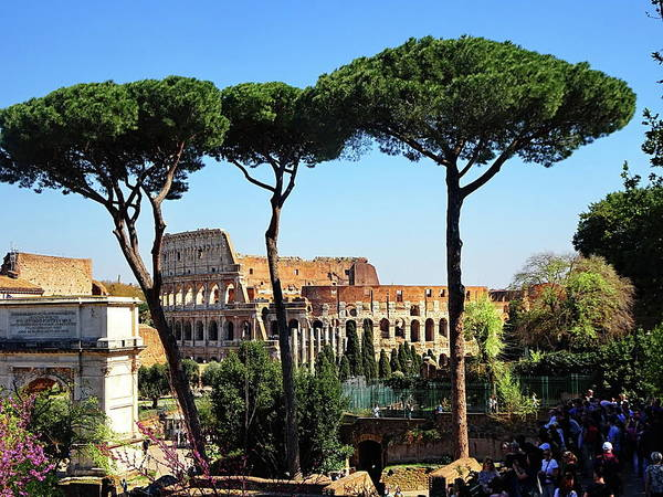 Wall Art - Photograph - Roman Colosseum And The Titus Arch As Seen From The Palatine Hill by Lyuba Filatova