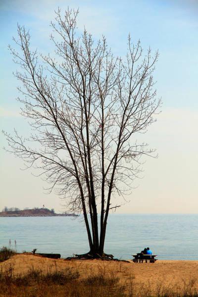 Wall Art - Photograph - Romance Tree by Valentino Visentini