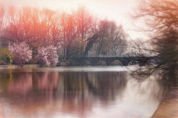 In Bruges Photograph - Romantic Minnewater Lake Bruges Belgium  by Carol Japp