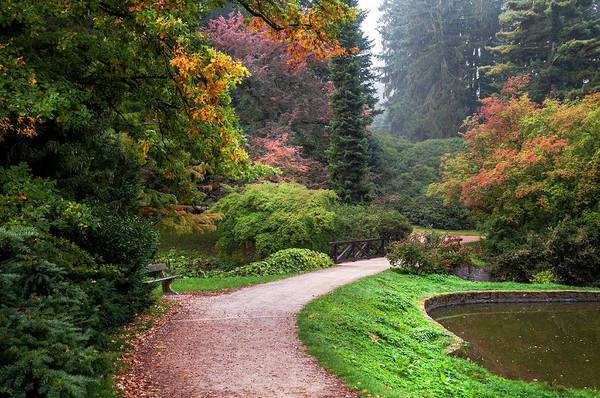 Photograph - Romantic Path In Arboretum  by Jenny Rainbow