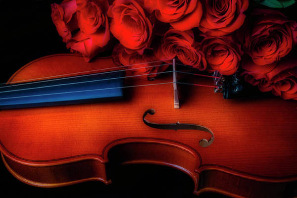 Wall Art - Photograph - Romantic Red Roses And Violin by Garry Gay