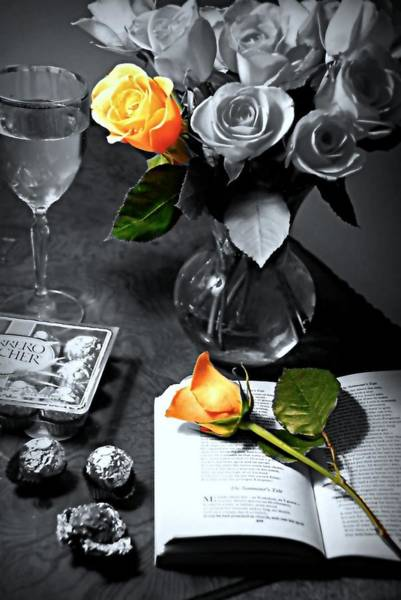 Wall Art - Photograph - Romantic Rose by Diana Angstadt