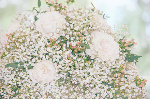Photograph - Romantic Wedding Bouquet With Roses by Jenny Rainbow