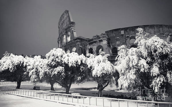 Wall Art - Photograph - Rome Under Snow - Colosseum Black And White by Stefano Senise