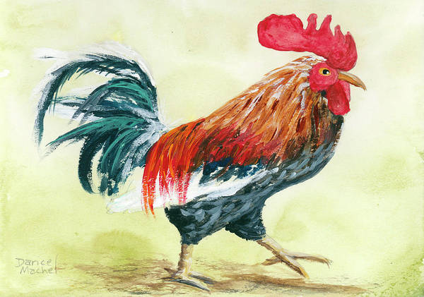 Painting - Rooster 1 by Darice Machel McGuire