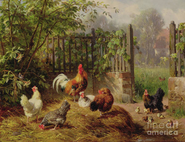 Barnyard Animal Painting - Rooster With Hens And Chicks by Carl Jutz