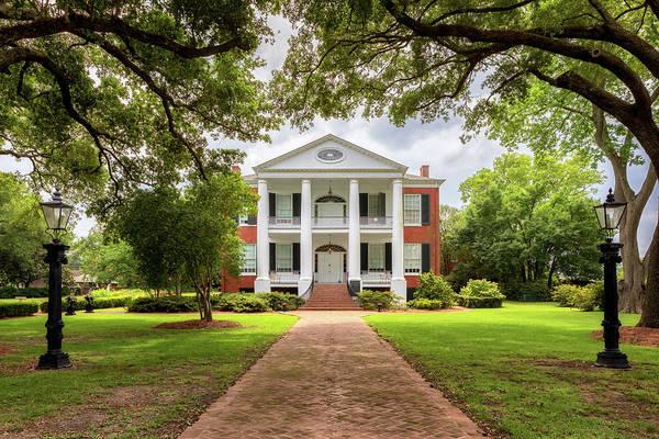 Photograph - Rosalie - Natchez, Mississippi by Susan Rissi Tregoning