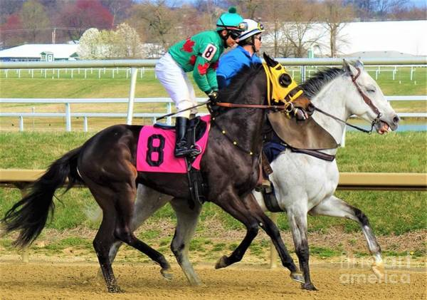 Wall Art - Photograph - Rosario Montanez - Glorious Weekend - Laurel Park by Anthony Schafer