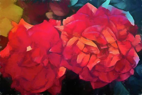 Wall Art - Photograph - Rose 398 by Pamela Cooper