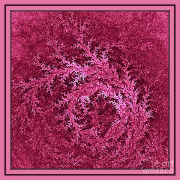 Digital Art - Rose Blush by Doug Morgan