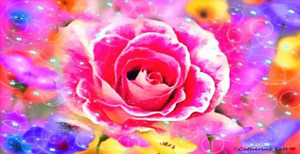 Digital Art - Rose Rainbow by Catherine Lott