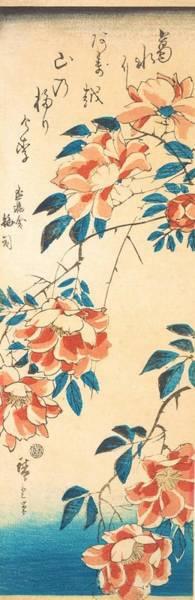 Wall Art - Painting - Rose by Utagawa Hiroshige