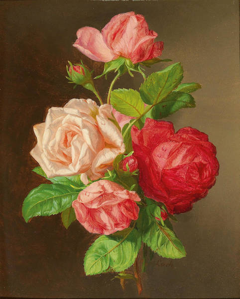 Painting - Roses by Andreas Lach