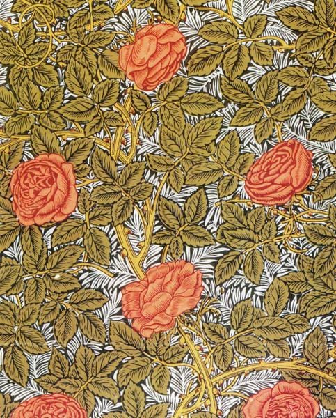 Wall Art - Painting - Roses - Digital Remastered Edition by William Morris