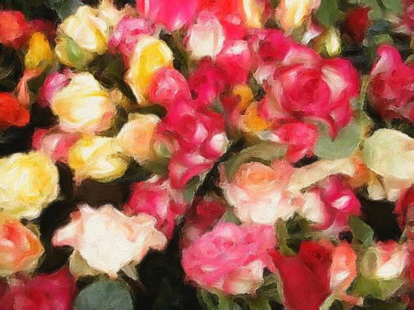 Photograph - Roses Galore by Isabella Howard