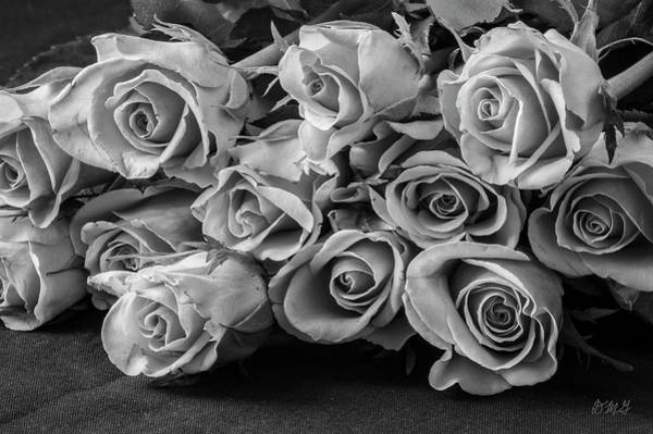 Photograph - Roses I Bw by David Gordon