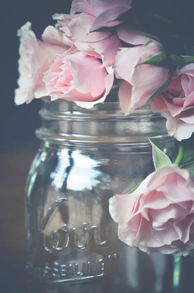 Photograph - Roses by Michelle Wermuth