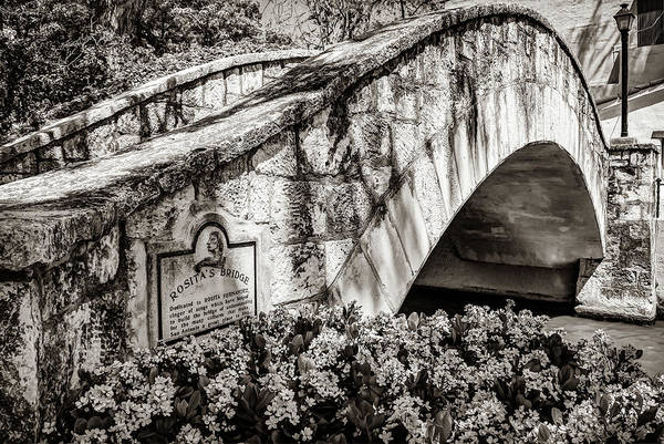 Photograph - Rosita's Bridge - San Antonio Texas Riverwalk - Classic Sepia by Gregory Ballos