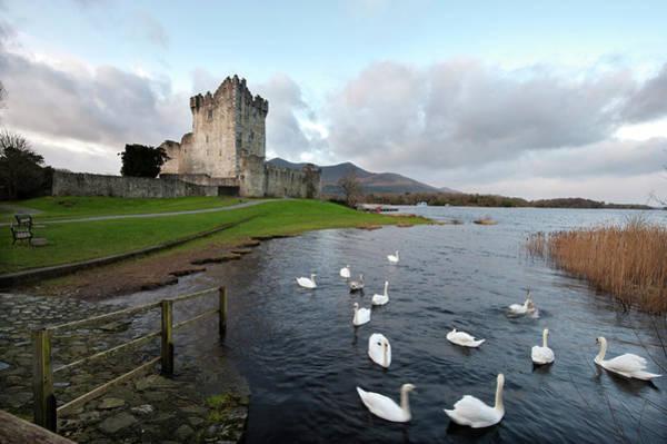 Killarney Photograph - Ross Castle by Sachin Vijayan Photography