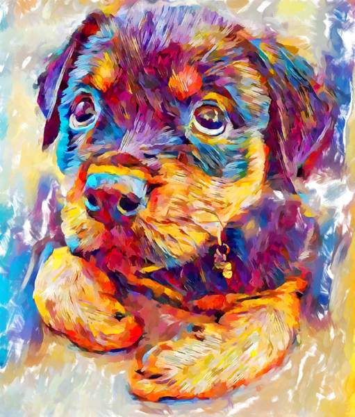 Wall Art - Painting - Rottweiler Puppy by Chris Butler
