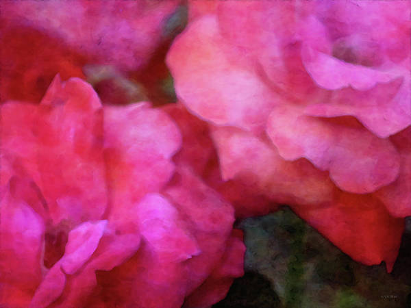 Photograph - Rouge 5485 Idp_2 by Steven Ward