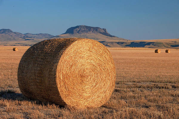 Photograph - Round Bale And Butte by Todd Klassy