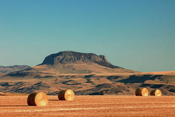 Photograph - Round Bales And Butte by Todd Klassy
