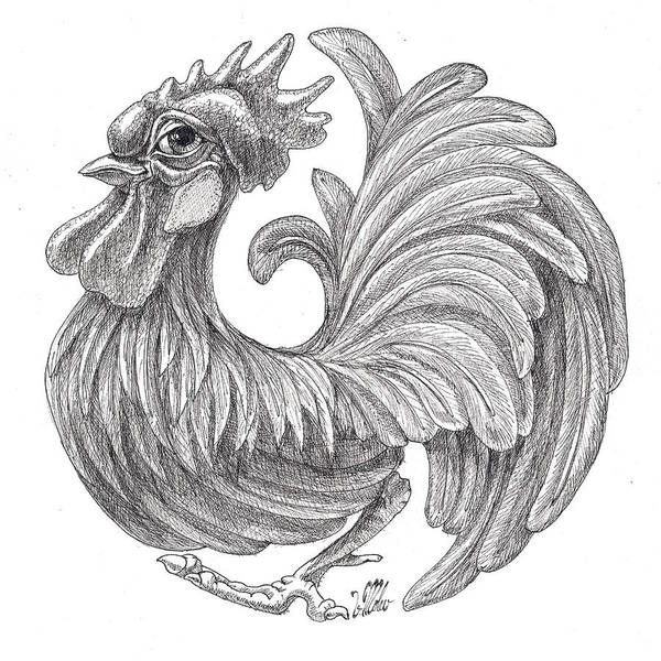 Drawing - Rounded Rooster by Victor Molev