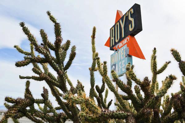Photograph - Route 66 Cactus by Kyle Hanson